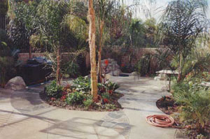 Landscape design for your backyard